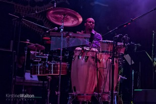 LittleSteven-HouseOfBlues-Chicago-IL-20171008-KirstineWalton010